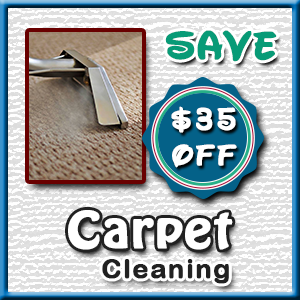 Carpet Offer
